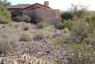 Residential Project in Paradise Valley - Before Grading, Excavation, Sod & Curbing Installation