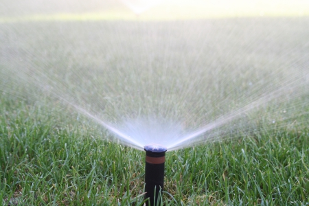 Sprinkler System Maintenance at Southwest Lawn Sprinkling Systems in Phoenix, Arizona